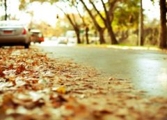 Що потрібно перевірити в авто восени: клопоти з електрикою